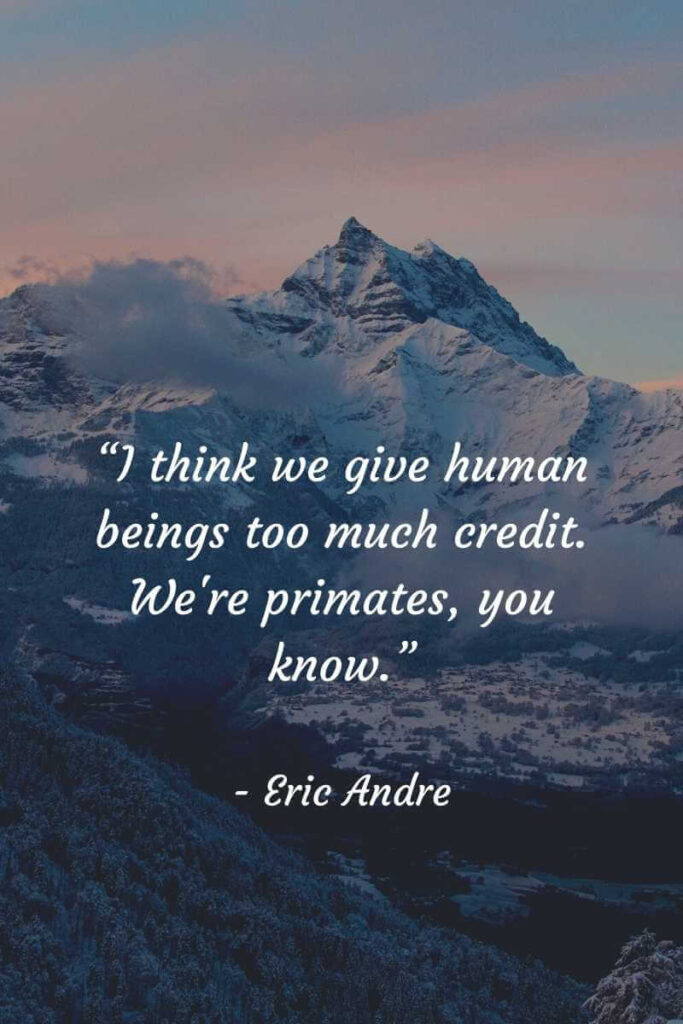eric andre show best quotes