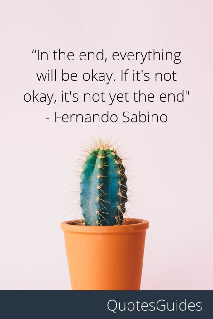 hang in there quotesfunny