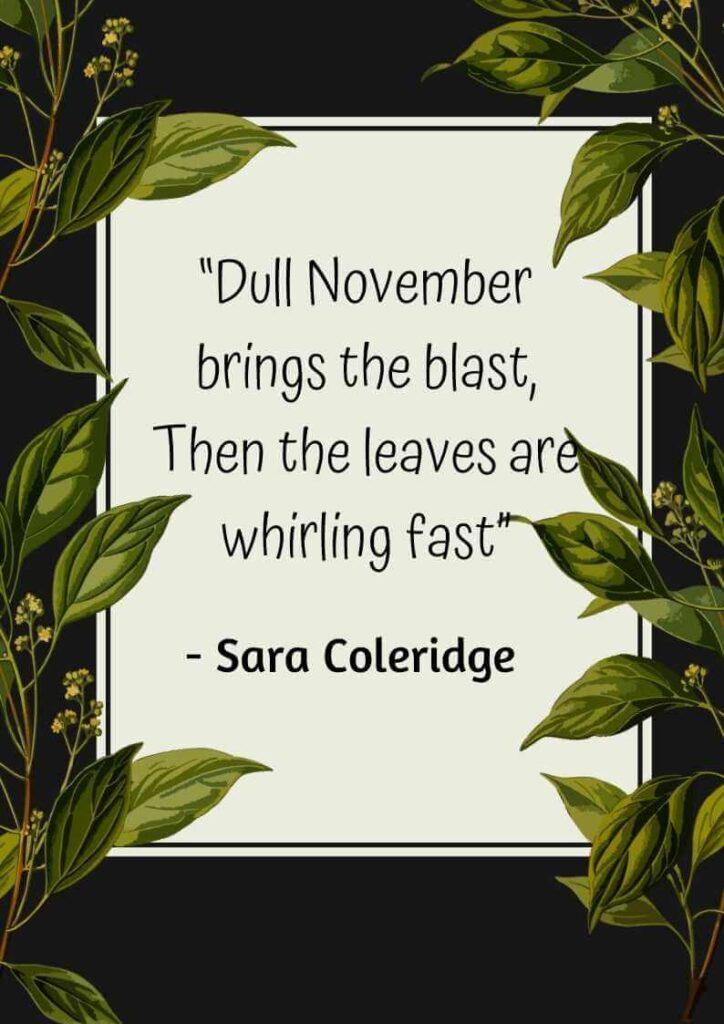 quotes about november babies