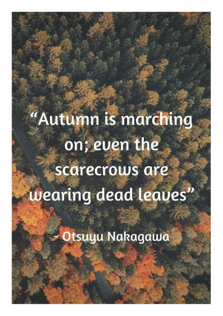 quotes about november birthdays