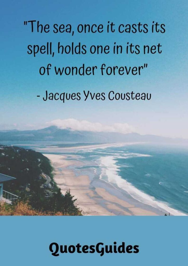 seashell quotes about friendship