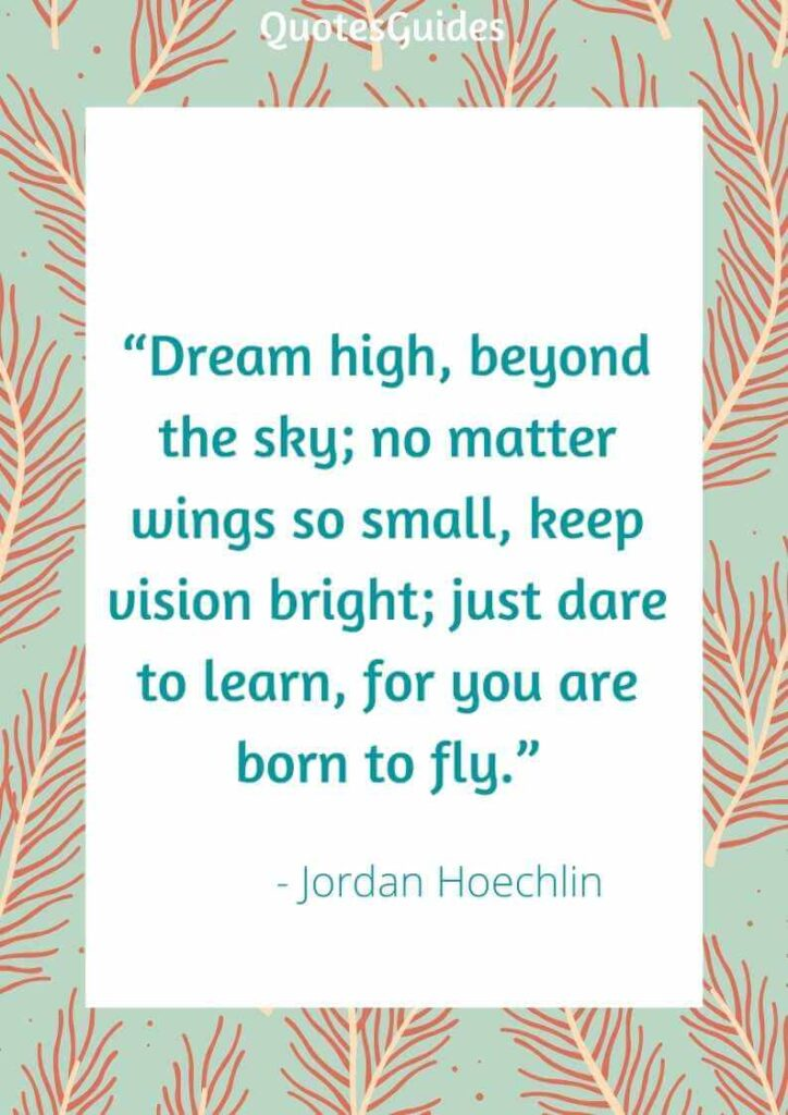 fly high and touch the sky quotes