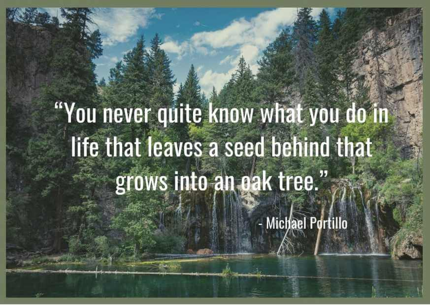 best quotes about planting seeds for life