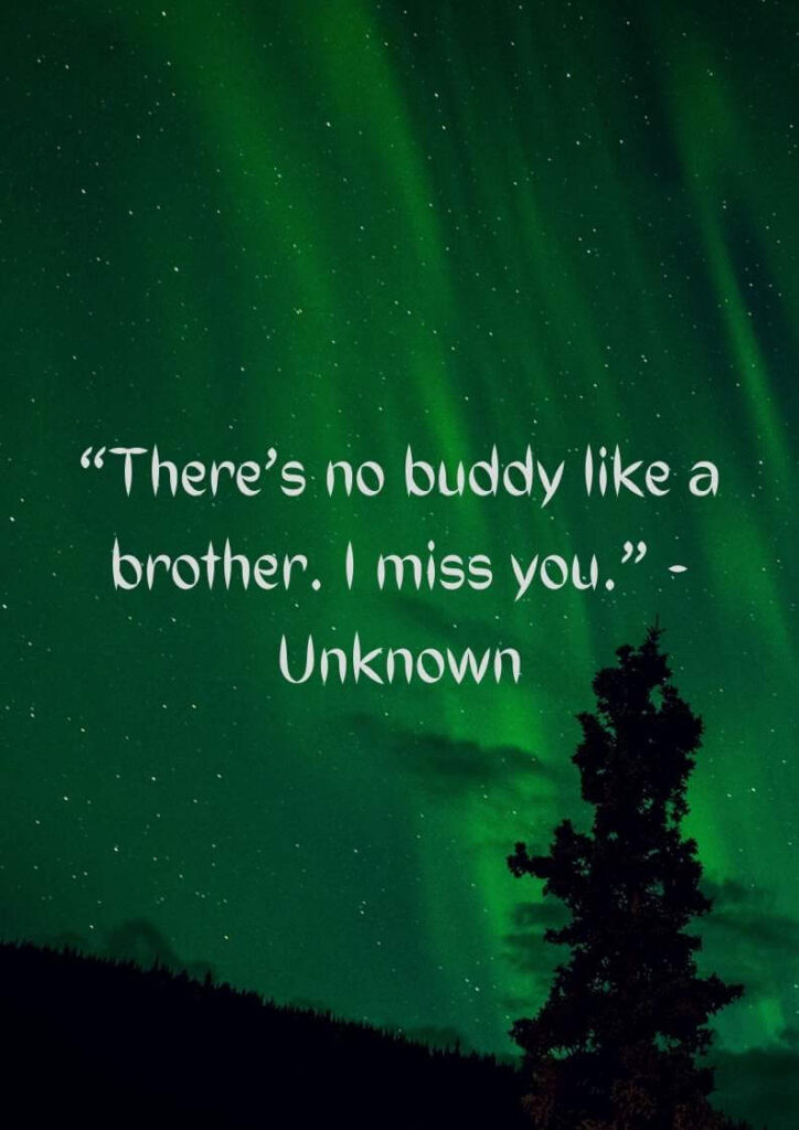 in loving memory of my brother quotes