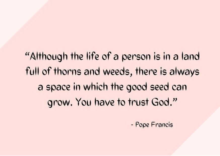 quotes about planting seeds for life images
