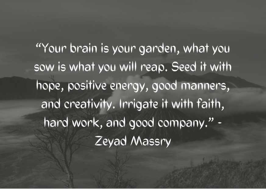 quotes about planting seeds for the future