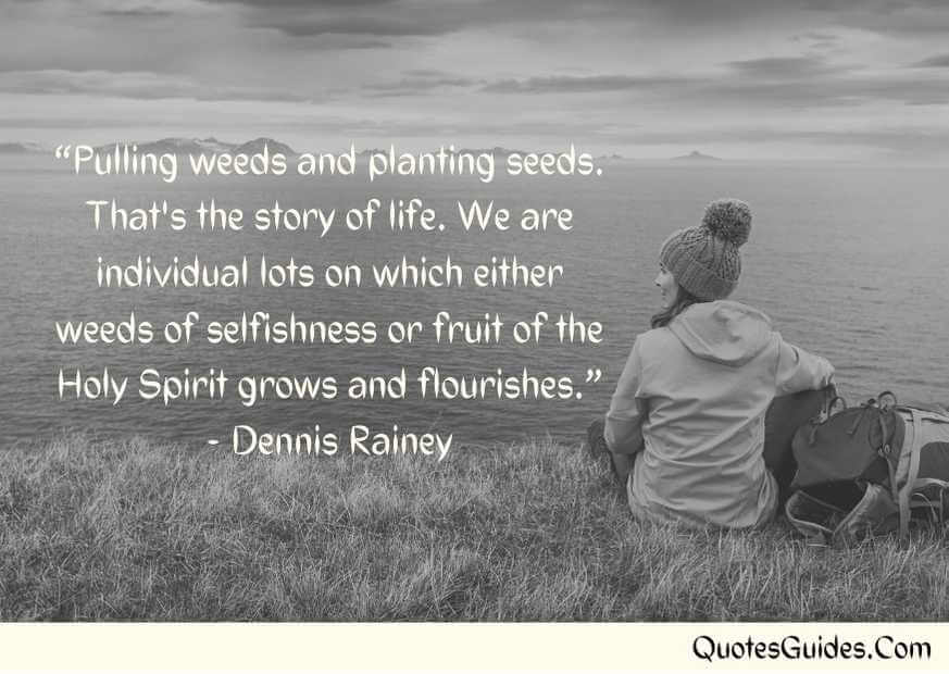 quotes about planting seeds of knowledge