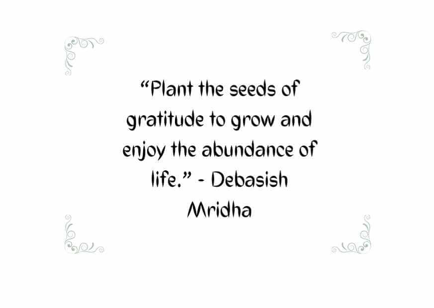 the day you plant the seed quote