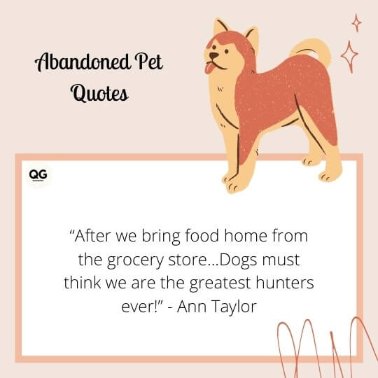 abandoned pet quotes