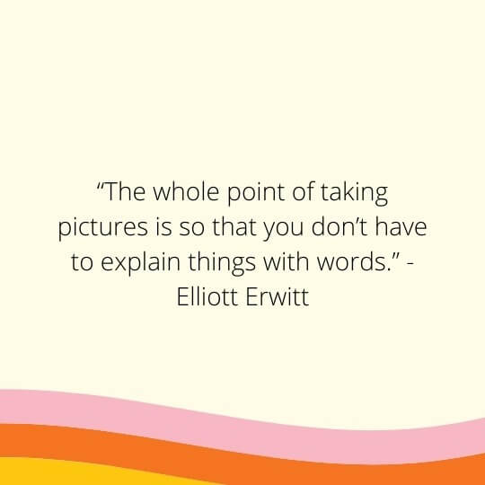 quotes about still life drawing