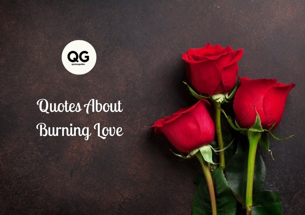 Quotes About Burning Love