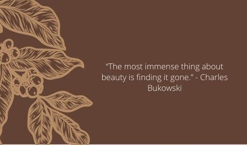 charles bukowski quotes about life and love